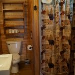 Cabin 1 bathroom with shower